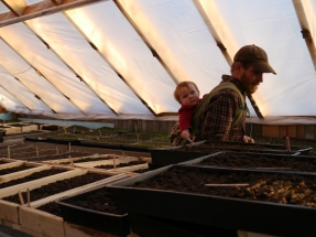 Evening in the Seed House