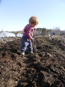 Waylon learns how to use the soil thermometer